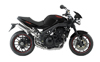 Speed Triple 15th Anniversary
